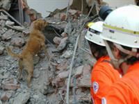 Kommunikationsmandate nach Erdbeben