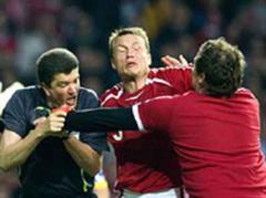 Schiedsrichter Herbert Fandel war von dänischen Fan attackiert worden.