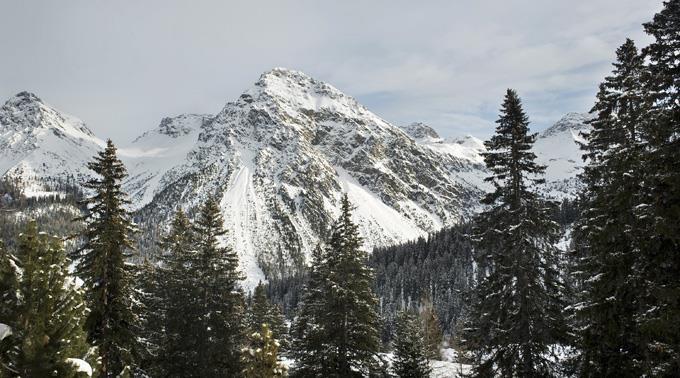 40 Prozent aller Wälder in der Schweiz bieten direkten Schutz vor Naturgefahren.